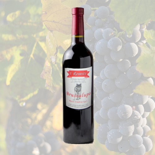 Vino Rosso Umbria IGT Bruscalupo