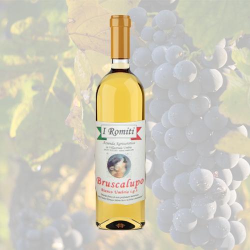 Vino Bianco Umbria IGT Bruscalupo